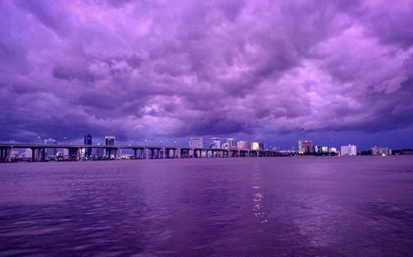 uragan dorian violet