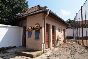 wc curte scoli